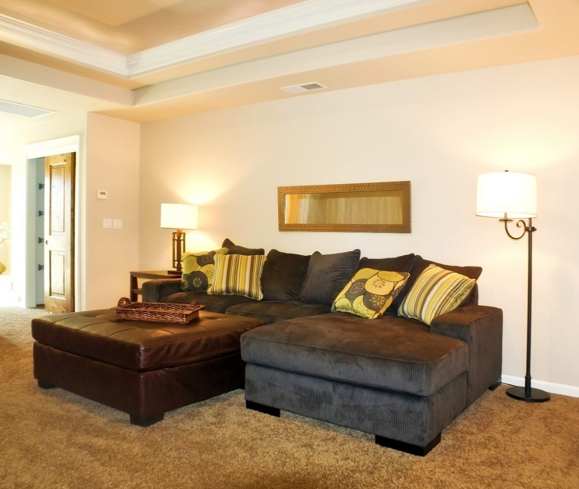 decorate the modern furniture of your living room on a low budget